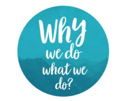 Why we do what we do ?